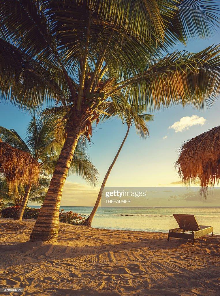 Caribbean beach : Stock Photo