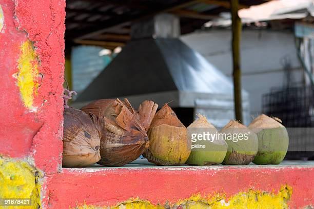 Karibik Kokosnüsse