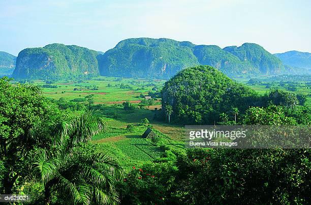 Caribbean countryside