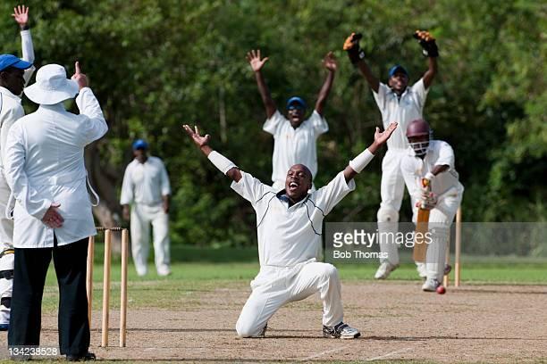 Caribbean Cricket