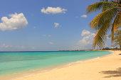 Caribbean Beach - Always Sunny