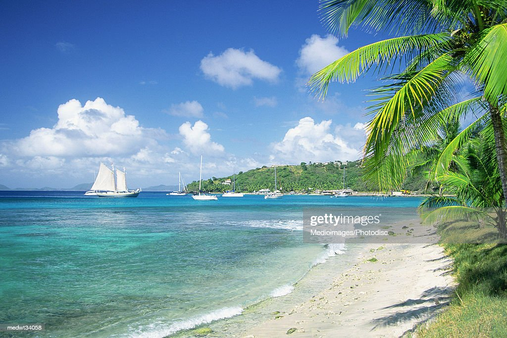 Caribbean, Grenadines, Britannia Bay, Mustique, View of a beach : Stock Photo