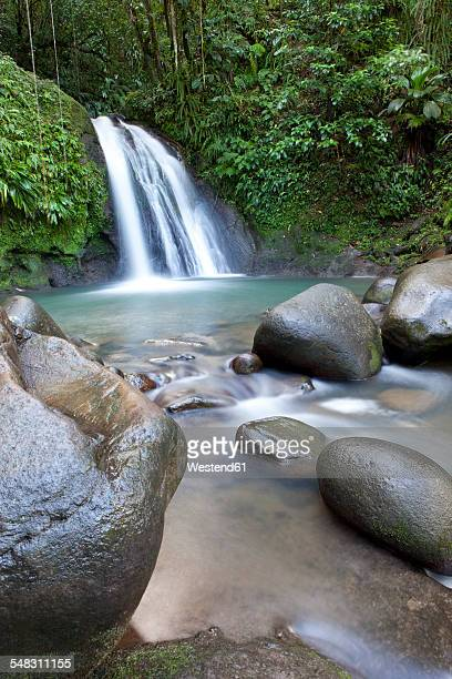 Caribbean, Guadeloupe, Basse-Terre, Waterfall Cascade aux Excrevisses