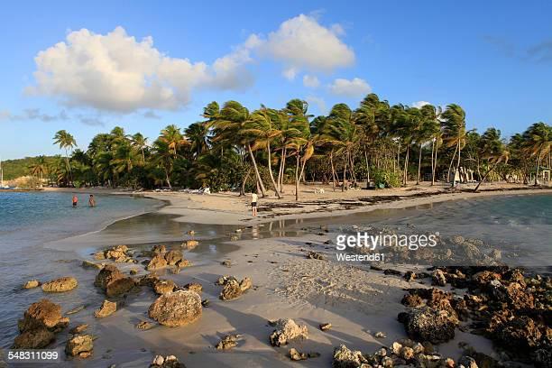 Caribbean, Guadeloupe, Grande-Terre, beach near by Sainte-Anne