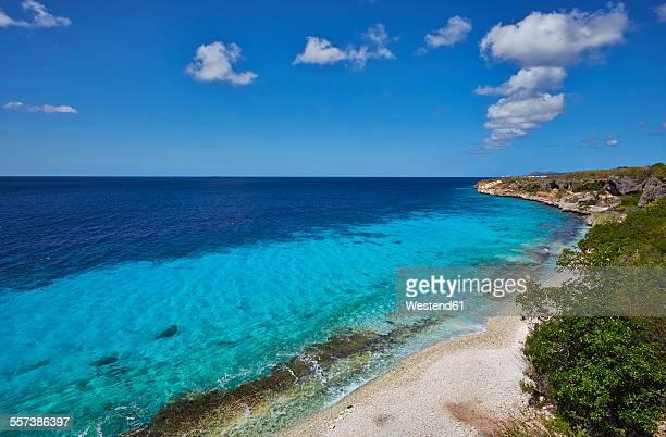 Caribbean, Netherlands Antilles, Bonaire, Pink Beach