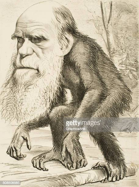 Caricature of Charles Darwin as an ape lithograph 1871