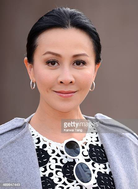 Carina Lau attends the Burberry Prorsum show at London Fashion Week AW14 at Kensington Gardens on February 17 2014 in London England
