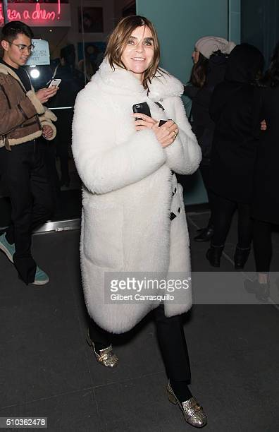 Carine Roitfeld is seen outside Diane Von Furstenberg Presentation Fall 2016 New York Fashion Week on February 14 2016 in New York City