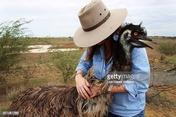 Carley Walker is greeted by a emu fondly named 'Stan' abandoned just after hatching he was found while mustering on a neighbouring property and was...