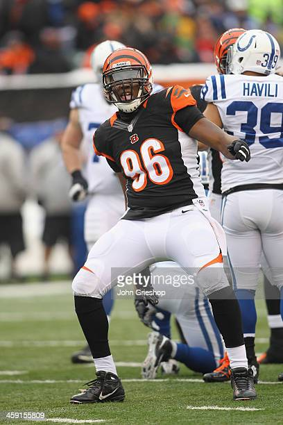 Carlos Dunlap of the Cincinnati Bengals celebrates a play during the game against the Indianapolis Colts at Paul Brown Stadium on December 8 2013 in...