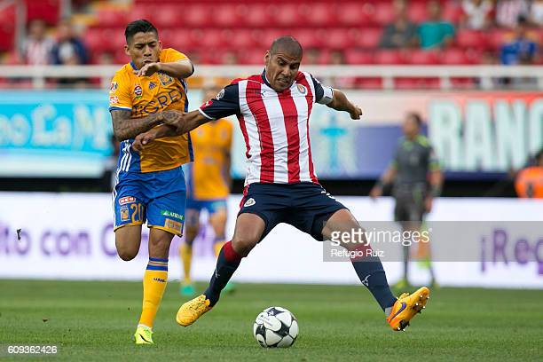 Carlos Salcido of Chivas fights for the ball with Javier Aquino of Tigres during the 10th round match between Chivas and Tigres as part of the Torneo...