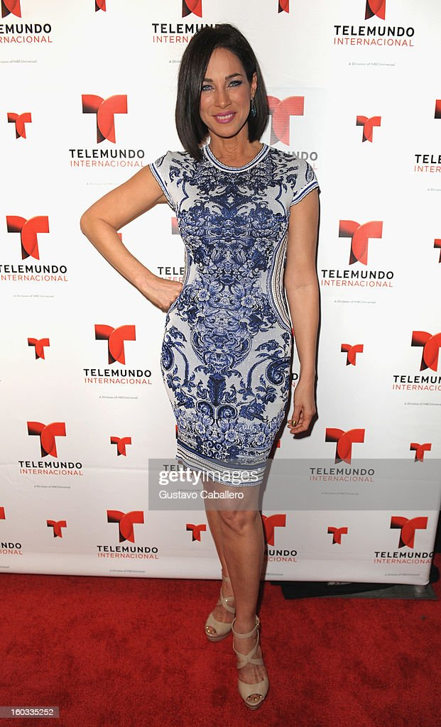 Carmen Dominicci attends Telemundo International NATPE VIP Party at Bamboo Miami on January 28, 2013 in Miami, Florida.