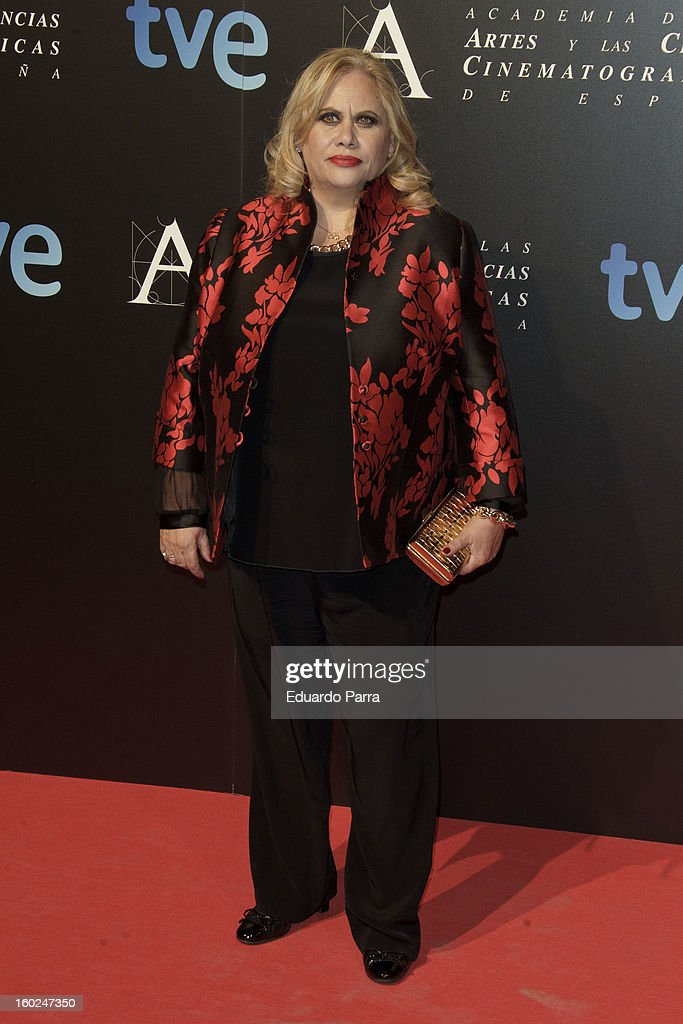 Carmina Barrios attends Goya awards final candidates party photocall at El Canal theatre on January 28, 2013 in Madrid, Spain.