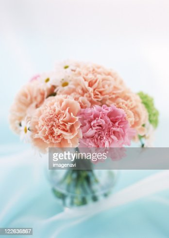 Carnation and Marguerite