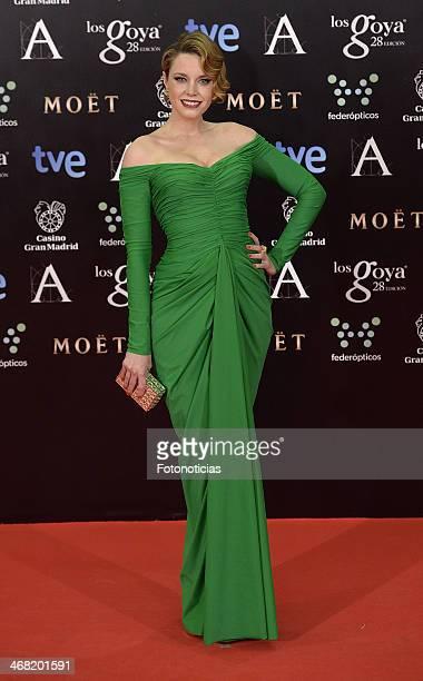 Carolina Bang attends Goya Cinema Awards 2014 at Centro de Congresos Principe Felipe on February 9 2014 in Madrid Spain