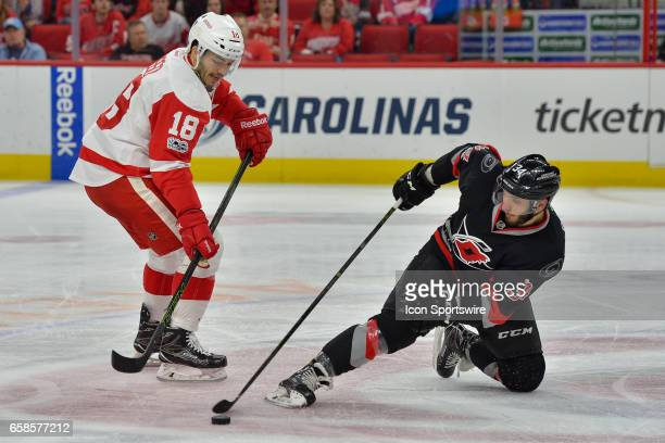 Carolina Hurricanes Right Wing Phillip Di Giuseppe knocks the puck away from Detroit Red Wings Defenceman Robbie Russo in a game between the Detroit...