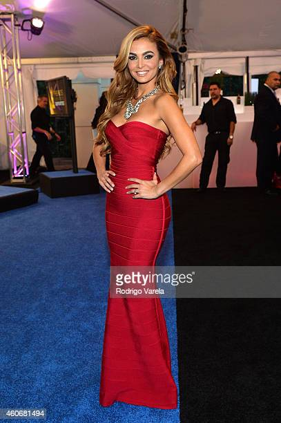 Carolina Macallister attends the inagural Premios Univision Deportes at Univision Studios on December 17 2014 in Miami Florida
