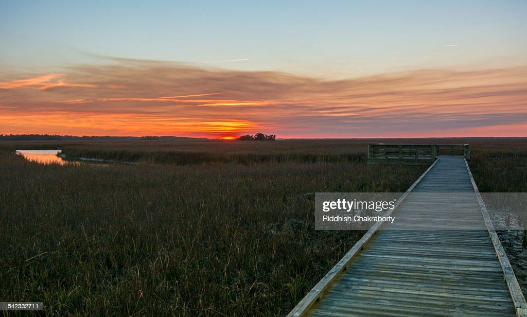 Carolina sunset