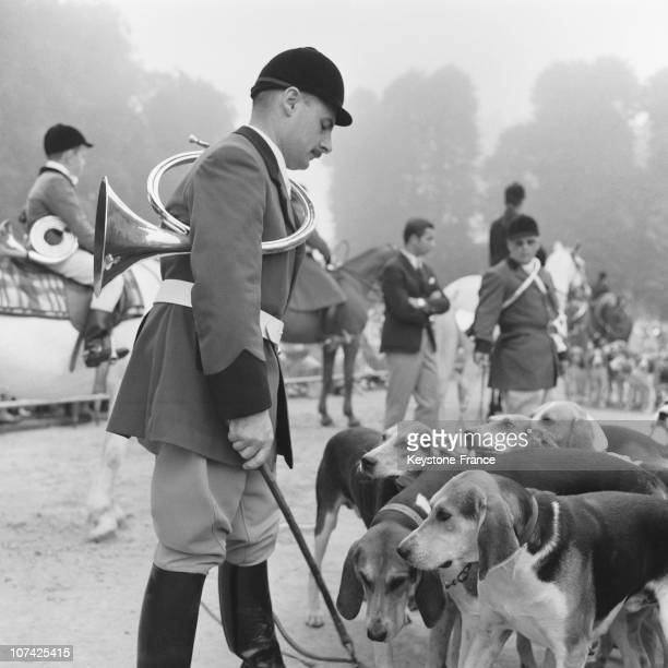 Carouge Castle Hunting Dog Training In Normandy In France During Fifties