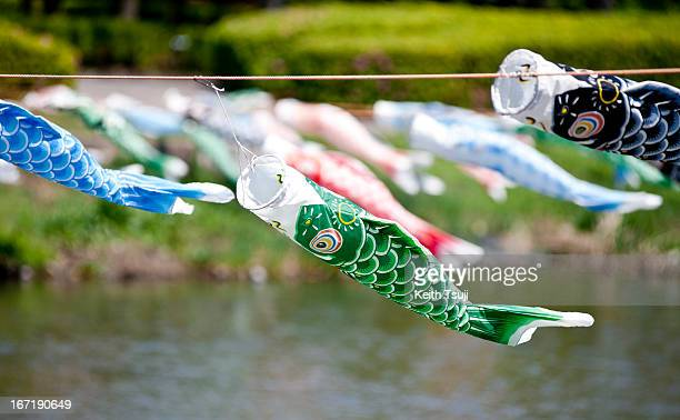 Carp streamers hang during the 'Koinobori' festival at Tsuruuda River on April 22 2013 in Tatebayashi Japan Traditionally people hang carp streamers...