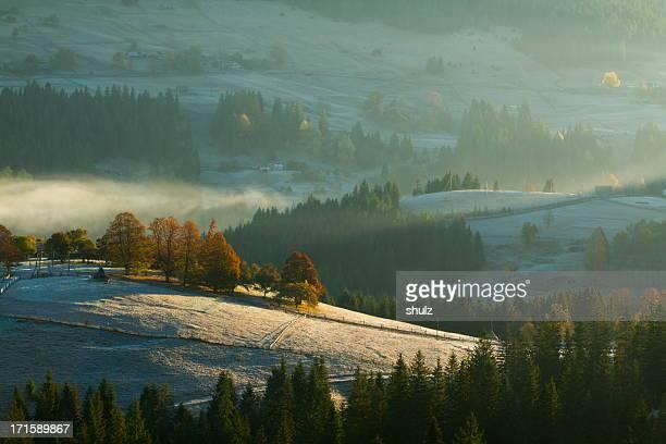 Carpathian paysage à l'aube