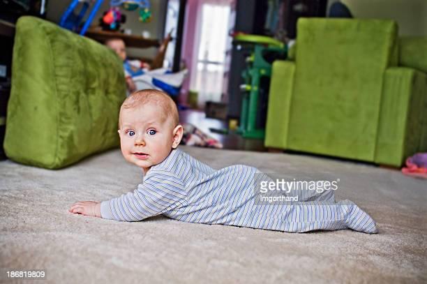 Carpet crawler