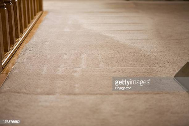 Carpet Selective Focus