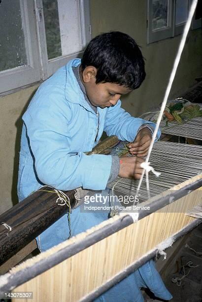 Carpet Weaving School Egypt