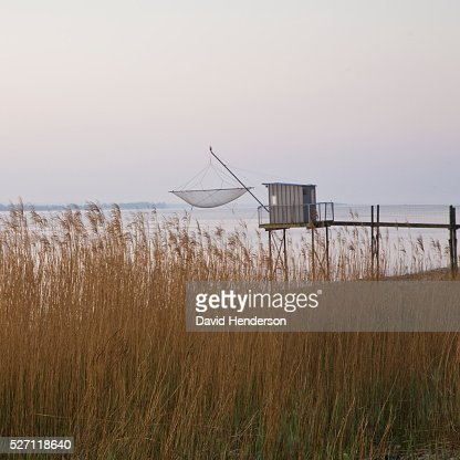 Carrelet (fishing platform) and tall reeds : Stock-Foto