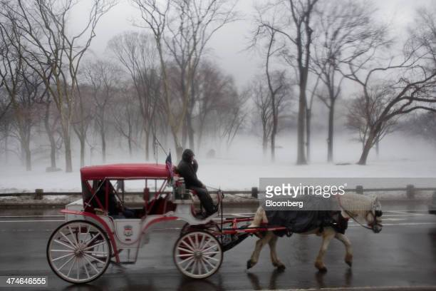 A carriage horse and driver take customers on a ride through Central Park in New York US on Friday Feb 21 2014 With Mayor Bill de Blasio pledging to...