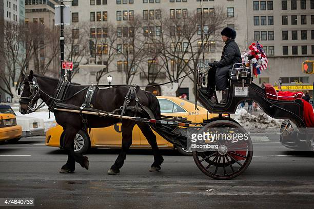 A carriage horse and driver walk along 59th Street near Central Park in New York US on Thursday Feb 20 2014 With Mayor Bill de Blasio pledging to ban...