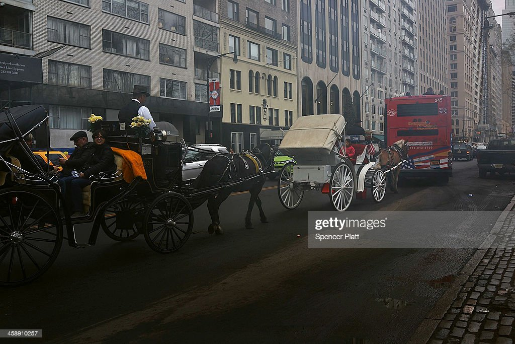 Carriage horses are viewed in traffic near central Park on December 22, 2013 in New York City. A carriage horse driver was charged on Friday with animal cruelty after police say his horse was working with a leg injury. Police say they noticed the horse, named Blondie, was limping and struggling to pull the weight of the carriage. Carriage rides are popular with tourists and many feel they have become an iconic part of Central Park. Calling them a form of animal cruelty, newly elected mayor Bill de Blasio promised during his campaign to ban horse carriages from the city's streets and parks.