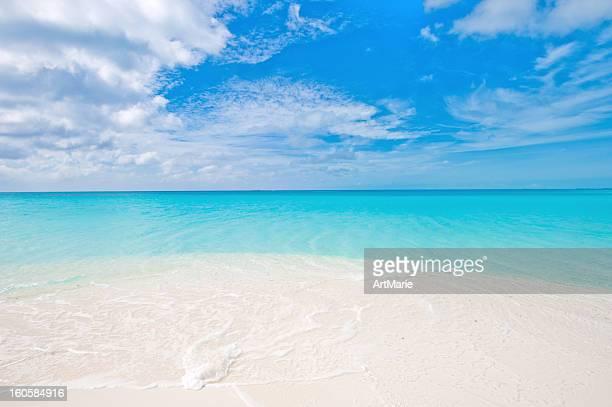 カリブ海の海