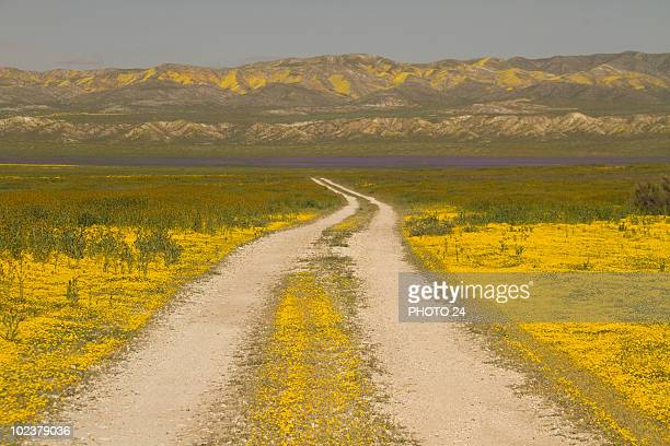 Carrizo Plain, CA
