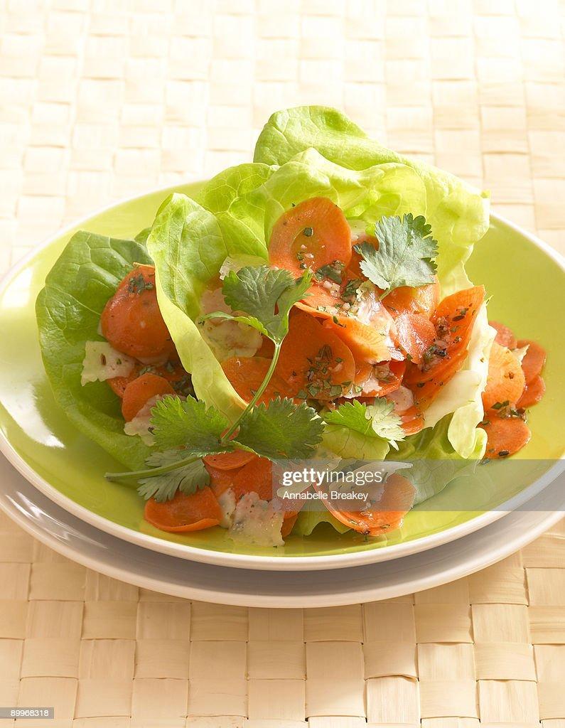 Carrot Manchego Salad : Stock Photo