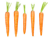 carrot isolated