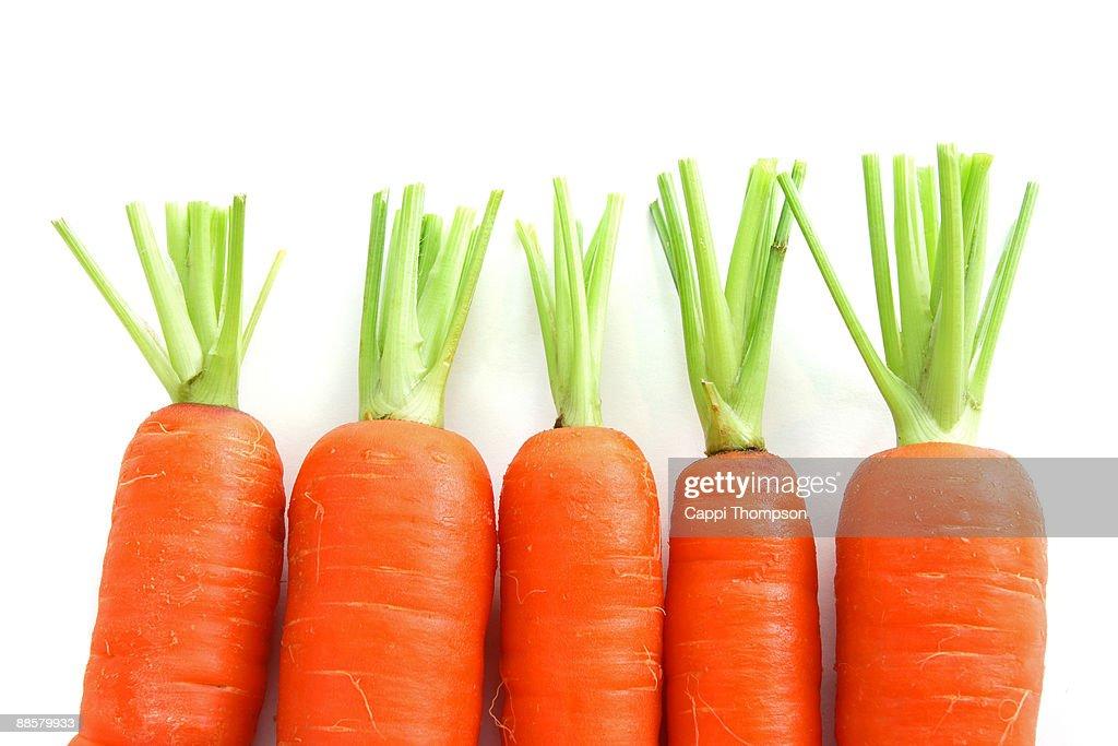 Carrot tops : Stock Photo