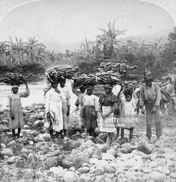 Carrying Bananas to market Jamaica