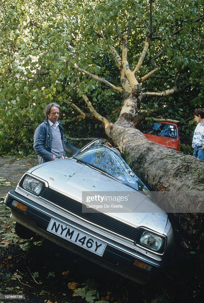 Cars crushed by falling trees in England, in the aftermath of the Great Storm of 1987, 17th October 1987.