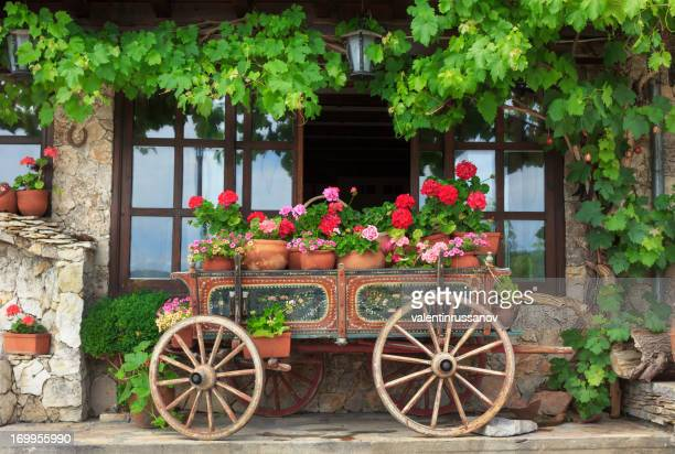 Cart and flower - countryside