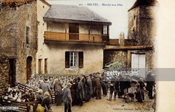 Carte postale illustrée par la photographie du marché aux oies de Belvès en France