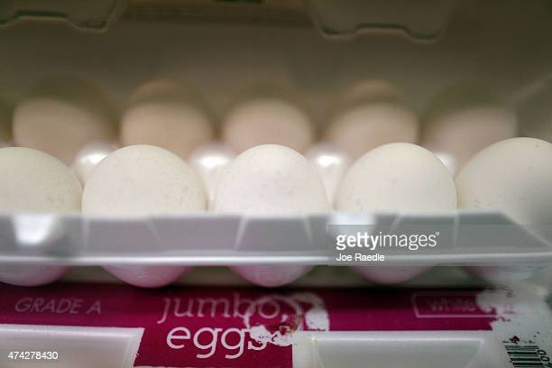 Cartons of eggs are stacked on shelves at Laurenzo's Italian Center on May 21 2015 in Miami Florida Egg prices are set to rise as Avian flu takes a...