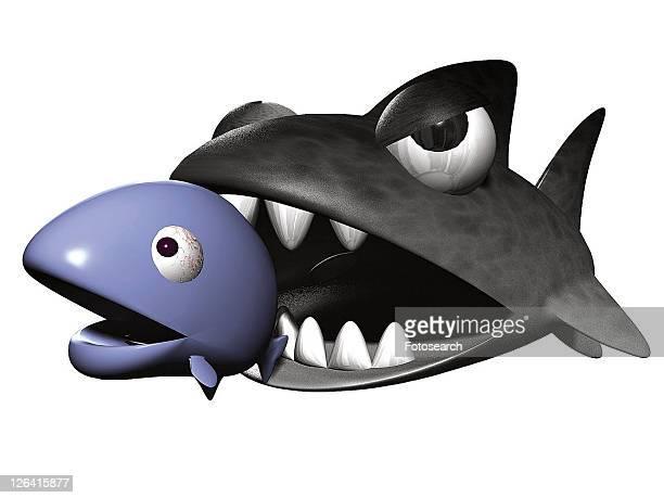 cartoon, black, cute, shark, 3D