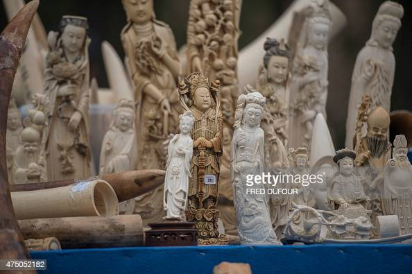 Carved ivory is shown to the media before being destroyed in Beijing on May 29 2015 China destroyed more than six hundred kilograms of ivory in front...