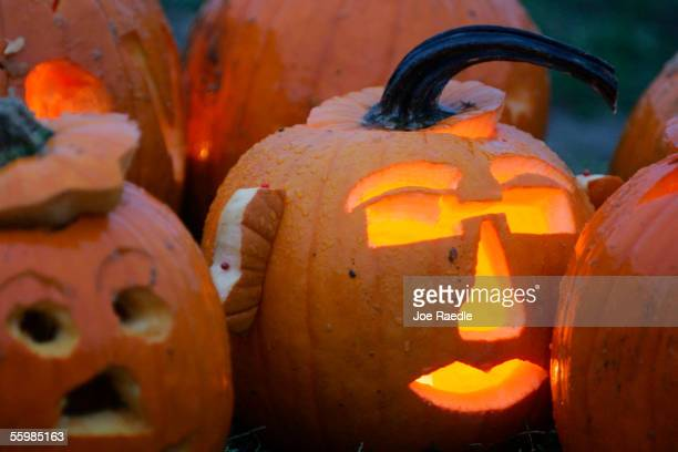 Carved pumpkins on display during the Life is good Pumpkin Festival 2005 October 22 2005 at the Boston Common in Boston Massachusetts The pumpkins...
