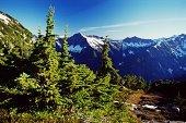 Cascade Mountains, Washington, USA