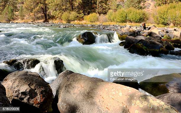 Cascading water of the Deschutes River viewed from the urban nature Deschutes River Trail in Bend Oregon
