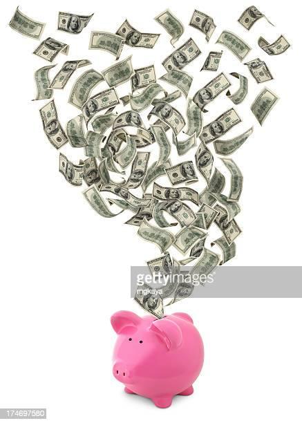 Cash Flow With Piggy Bank