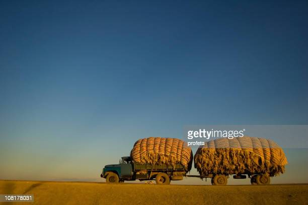 Cashmere Wool Truck on Flat Road