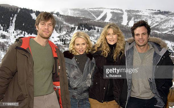 Cast of 'We Don't Live Here Anymore' Peter Krause Naomi Watts Laura Dern and Marc Ruffalo
